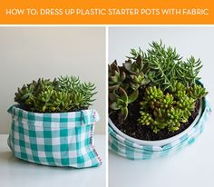 How To: Dress up Ugly Plastic Starter Pots with Fabric » Curbly | DIY Design Community