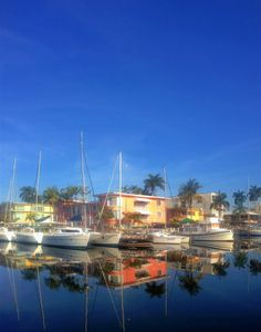 Venice of America, Fort Lauderdale. Mid Century Modern architecture & luxury yachts reflected in the waterway.