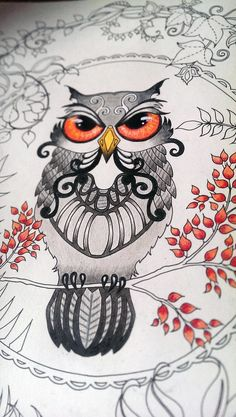 Johanna Basford Enchanted Forest Owl