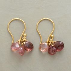 """PINK RAIN EARRINGS (Sundance Jewelry)--A pair of pink rain tourmaline earrings, featuring tourmaline briolettes in rosy shades dripping prettily from French wires. A Sundance exclusive in 14kt goldplate. 7/8""""L."""