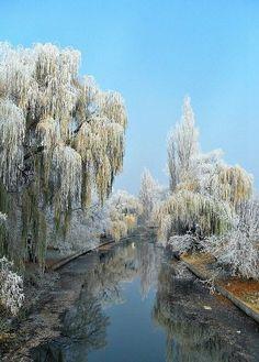Bontovics Ilona: Zúzmarás a Körös Hungary Travel, Beautiful Pictures, Beautiful Scenery, Central Europe, My Heritage, Planet Earth, Budapest, Countryside, Frost