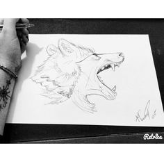 My wolf's drawing✌️✖️