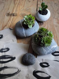 mihulli: new miniature planters Cool Kids, Kids Fun, Planter Pots, Succulents, Design, Home Decor, Decoration Home, Room Decor