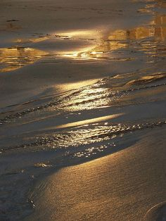 Golden Sand by Cloudberries