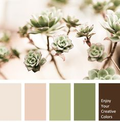 Color Palette - Million Shade Bedroom Colour Palette, Nature Color Palette, Modern Color Palette, Pastel Colour Palette, Neutral Colour Palette, Summer Color Palettes, Brown Color Palettes, Color Palette Challenge, Brown Color Schemes