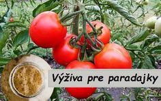 Chcete získať bohatú paradajkovú úrodu? Na pestovanie paradajok použite roztok s droždím ! Toto prírodné hnojivo si môžete pripraviť pre paradajky doma v niekoľkých jednoduchých krokoch. Potrebujeme: 100 g čerstvého droždia 2,5 l teplej vody 100 g cukru Postup: Na prípravu tohto prírodného hnojiva potrebujete väčšiu nádobu (asi 4 litrovú). Ďalšia dôležitá zásada pre úspech... Chicken Dips, Dip Recipes, Lawn And Garden, Backyard, Organic, Fruit, Vegetables, Food, Anna