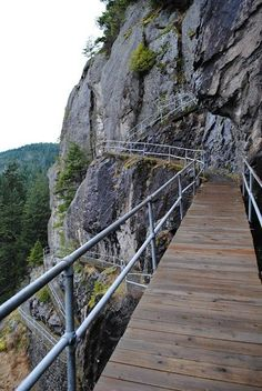 Beacon Rock Trail - Columbia River Gorge, Washington. Such a cool hike!