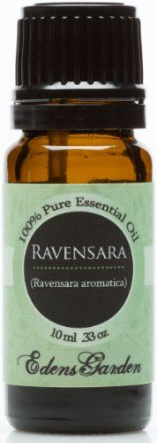 Ravensara 100% Pure Therapeutic Grade Essential Oil- 10 ml - http://essential-organic.com/ravensara-100-pure-therapeutic-grade-essential-oil-10-ml/