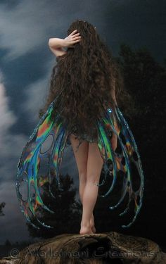 Fairy Tale Day Dreams }}i{{ Fairy Tale Day Dreams down the dreaming trail we go. where all the rivers of emotional illusions grow (mlv) Fairy Dust, Fairy Land, Fairy Tales, Magical Creatures, Fantasy Creatures, Fantasy World, Fantasy Art, Fantasy Fairies, Elfen Fantasy