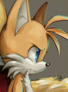 Tails the fox Silver The Hedgehog, Shadow The Hedgehog, Tails Sonic The Hedgehog, Sonic Funny, Pokemon, Classic Sonic, Sonic Franchise, Sonic Adventure, Sonic Heroes