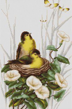 Las aves en el nido Embroidery Patterns Free, Cross Stitch Patterns, Cross Stitch Bird, Cactus Plants, Needlework, Birds, Crochet, Knitting, Crafts