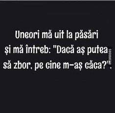 Pe cine m-as caca daca as fi pasare? Funny Picture Quotes, Funny Photos, Really Funny, The Funny, Funny Texts, Funny Jokes, Son Luna, Marvel Funny, True Words