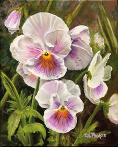Buy Purple and White Pansies still life flower oil painting titled: White Purple Pansies, Oil painting by Delmus Phelps on Artfinder. Discover thousands of other original paintings, prints, sculptures and photography from independent artists.