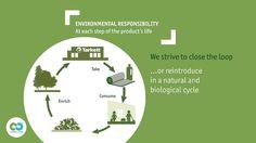 2014 Sustainability Movie