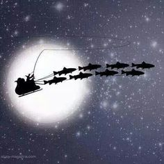 Merry Christmas to all my fly fishing friends! Have a wonderful and safe holiday.