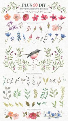 Watercolour Wreath Creator by Lisa Glanz on Creative Market #watercolor #design #floral Download: https://creativemarket.com/Glanz/142484-Watercolour-Wreath-Creator?u=nexion