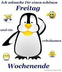 Die 128 Besten Bilder Von Spruche Whatsapp Funny Images Funny