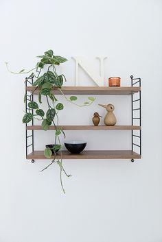 string + plant