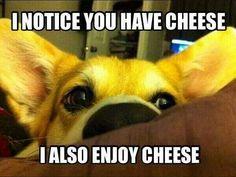 I also enjoy cheese