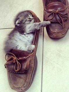 So cute! | My Simply SpecialMy Simply Special