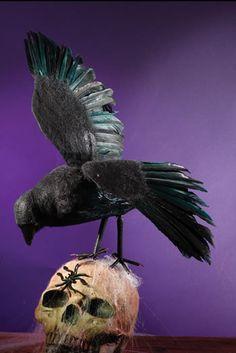 Black Feather Raven