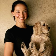 Ashley Judd & Cockapoo. Ashley owns two cockapoos and was recently involved in trying to save the life of a rescue cockapoo, named Walter.