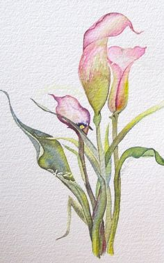 watercolor flowers, I'd love to do this with colored pencils