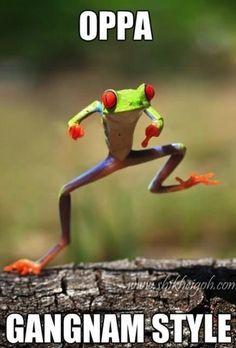 OMG! Oppa Gagnam style:)