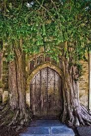 woodland doorways