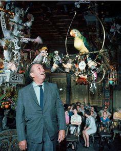 Walt Disney inside The Enchanted Tiki Room at Disneyland. Anaheim,  California