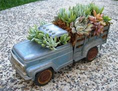 A succulent arrangement in a toy truck = A garden addition the grandchildren would find delightful.