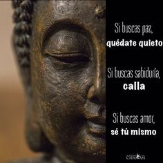 Si buscas paz, quédate quieto... Spiritual Messages, Spiritual Life, Sweet Words, Love Words, Spirit Quotes, Buddhist Quotes, Magic Words, Osho, Love Messages