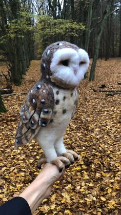 Tawny Owl, Burrowing Owl, Birch Branches, Owl Ornament, Woodland Decor, Wild Birds, Unique Photo, Make Time, Needle Felting