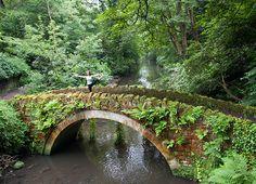 Jesmond Dene bridge