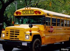 Pennsylvania School Bus Driver, Gets 2 DUIs Within 17 Hours