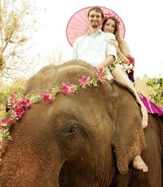 Beautiful and unique elephant destinatoin wedding on location in Chiang Mai, Thailand at the Chai Lai Orchid Phuket Wedding, Destination Wedding, Thai Elephant, The Chai, Thailand Elephants, Chiang Mai Thailand, Elephant Wedding, Signature Design, Wedding Events
