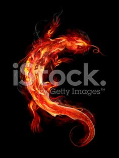 FIre Salamander royalty-free stock vector art