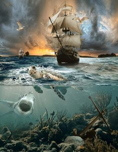"Sundown by Jan Staes on Artist description: ""Sundown"" - Photoshop composite. I made this approximately one year ago. Ship Paintings, Landscape Paintings, Old Sailing Ships, Pirate Art, Pirate Ships, Ghost Ship, Ship Art, Tall Ships, Pirates Of The Caribbean"