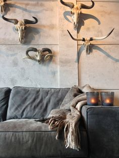 Grey taxonomy living room * Interiors Interiors Interiors * The Inner Interiorista Interior Styling, Interior Decorating, Interior Design, Decorating Ideas, Animal Skulls, Home Living Room, Antlers, Home Decor Inspiration, Interior And Exterior