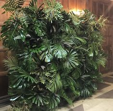 PALMS & GRASS // Amazing living wall for our launch party!! #jungle #florals