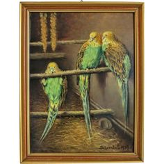 Painting oil on canvas depicting three budgies, signed and dated 1937 : Chateau Antique Antique Art, Vintage Art, Antique Silver, Baby Budgies, Shades Of Yellow, Oil On Canvas, Cool Art, Ruby Lane, Miniatures