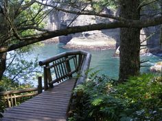 Cape Flattery Trail | 11 Fascinating Spots In Washington That Are Straight Out Of A Fairy Tale