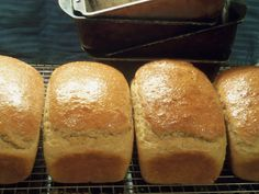 Really Good Whole Wheat Bread Without a Grain Mill