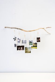Ombre Tree Branch Photograph Hanger with white fading clothespins. Hand carved and wrapped with gray, white and black strings and twine by BumaStudio on Etsy https://www.etsy.com/listing/195472283/ombre-tree-branch-photograph-hanger-with
