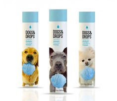 Dog Shampoo Packaging. Adorbs.