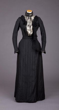 Dress  1890s  Goldstein Museum of Design