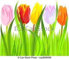 Tulips Stock Illustrations. 15,196 Tulips clip art images and ...