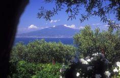 Sea View Hotel in Sorrento - Panoramic Hotel in Sorrento - Panoramic Sorrento Hotels