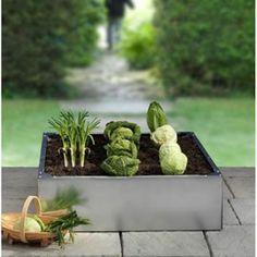 Cultivez vos légumes préférés en quantité mesurée, sur des surfaces limitées - 100 x 100 cm x h.30 cm
