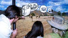 """I protagonisti dei """"meme"""" possono essere personaggi famosi (la vignetta Condescending Wonka vede Gene Wilder in un'immagine del film Willy Wonca e la fabbrica di cioccolato), animali (per esempio Tard, il gatto antidivo) e i Rage Face (come Derp, il nerd dei nostri tempi, o Troll Face). Il protagonista viene scelto per interpretare un preciso sentimento o aspetto caratteriale."""